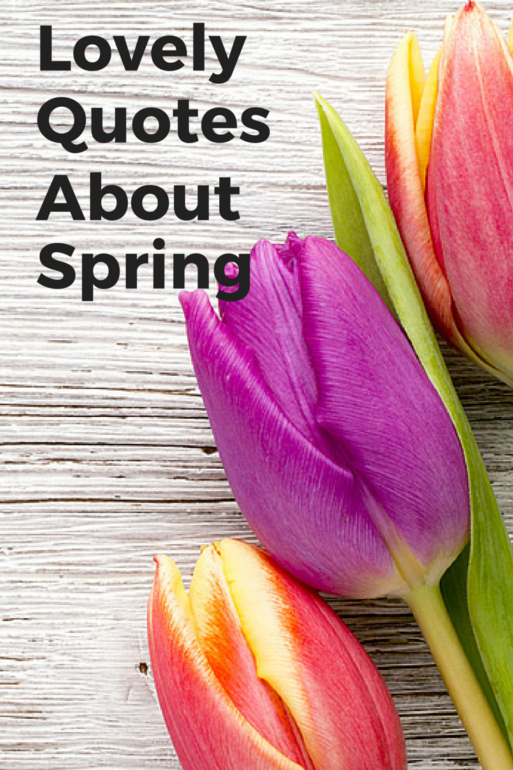 Are you a fan of quotations? In light of the fact that spring is here, I compiled a list of  10 lovely quotes about springtime.  I hope you enjoy them!