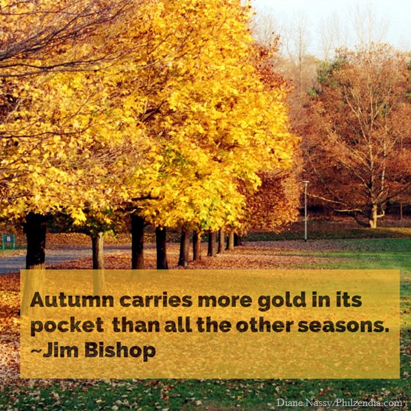 Autumn carries more gold in its pocket than all the other seasons. ~Jim Bishop (1)