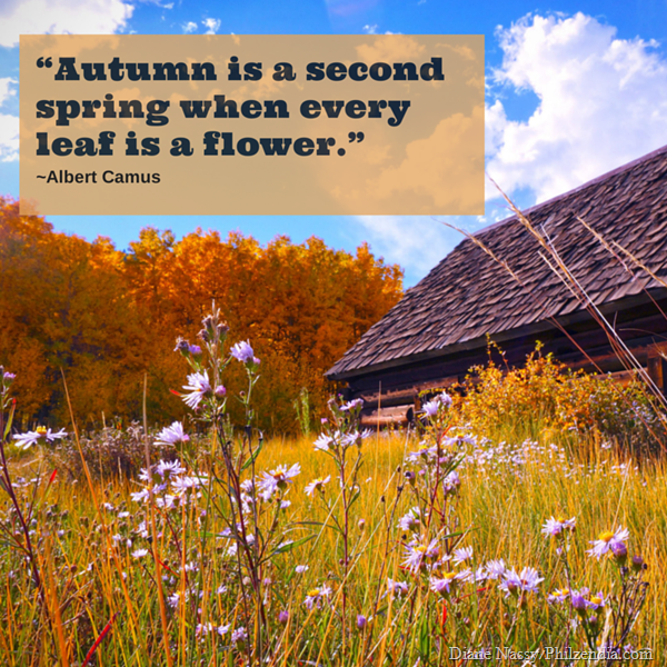 """Autumn is a second spring when every leaf is a flower2."""