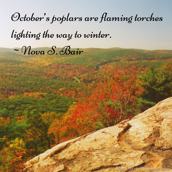 October's poplars are flaming torches lighting the way to winter. ~Nova S. Bair