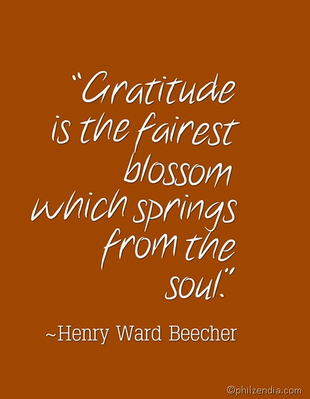 Quotes About Gratitude - Gratitude is the fairest blossom