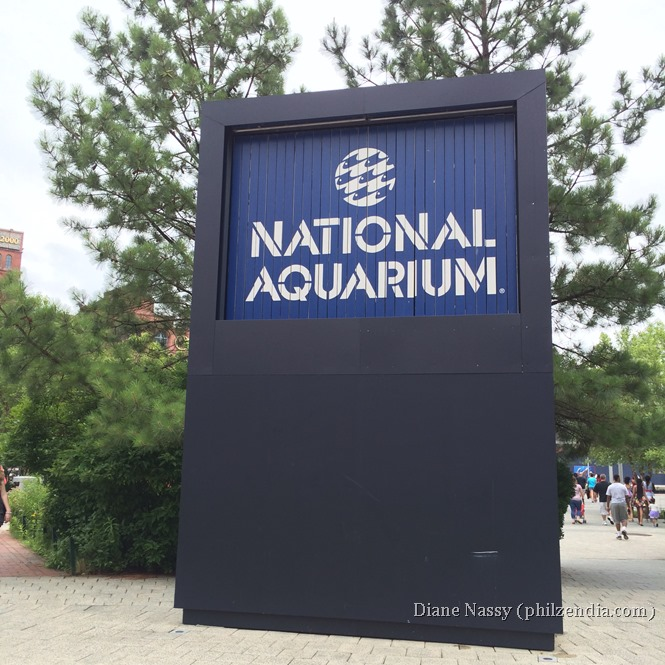 National Aquarium - Baltimore