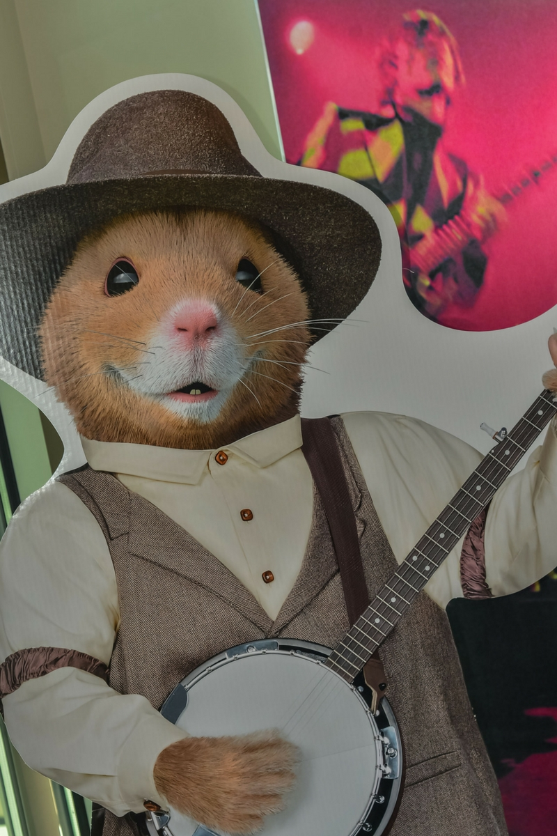 Kia Soul Hamster playing the banjo