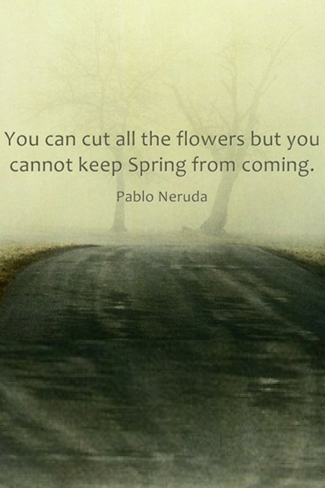 You can cut all the flowers picture quote (1)