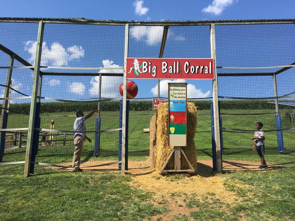 Big Ball Corral at Cherry Crest Adventure Farm