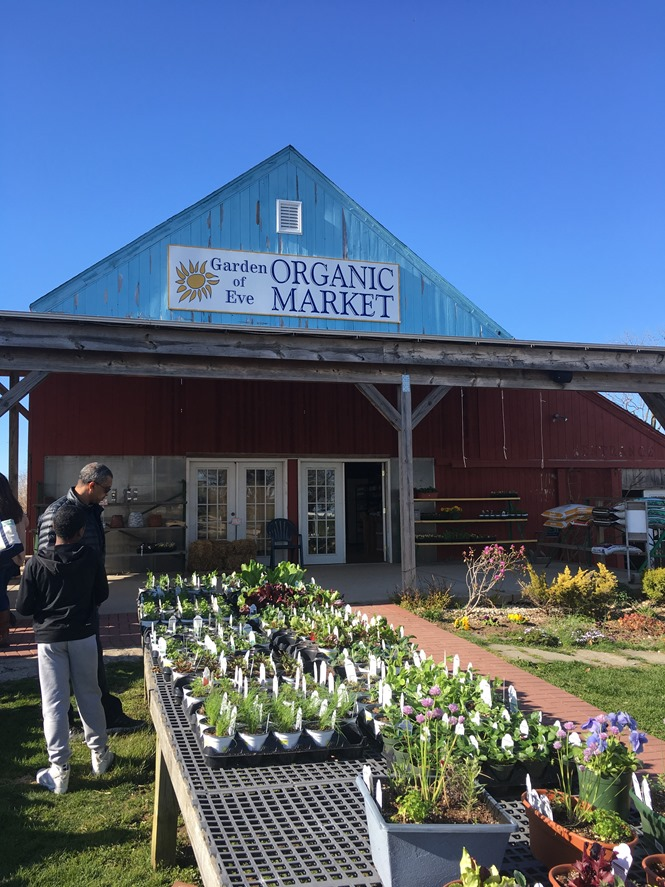 Garden of Eve Farm & Market