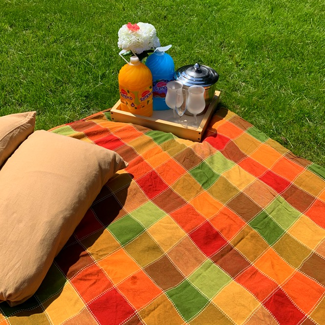 Backyard picnic setting