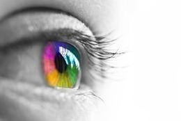 multicolored eye - © Delphimages - Fotolia.com