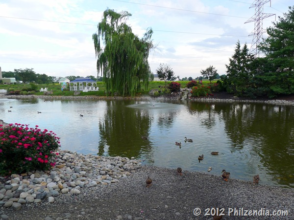 The duck pond at the Fulton Steamboat Inn in Lancaster County PA